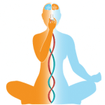 تمرین تنفسی نادی شودانا یا تنفس تناوبی