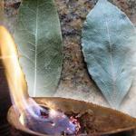سوزاندن برگ بو و دور کردن انرژی منفی