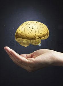 قدرت پایین مغز