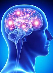 قدرت مغز