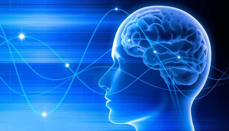 امواج مغزی انسان