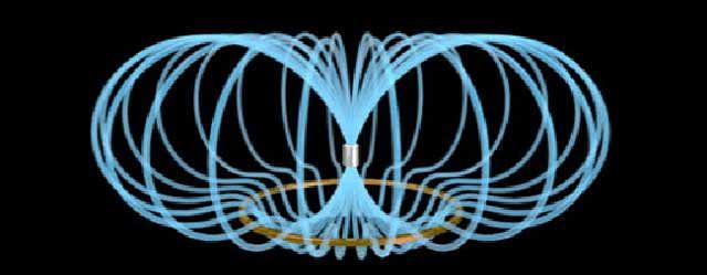 مغناطیس حیوانی چیست؟ | تقویت مانیه تیزم