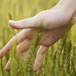 غیب لمسی | نشانه های غیب لمسی