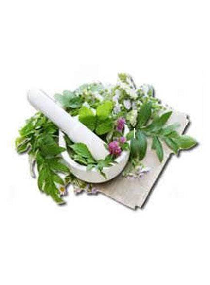 چاکراها و گیاهان دارویی | متعادل کردن چاکرا با گیاهان
