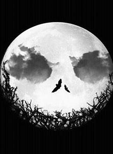 ماه و جنون