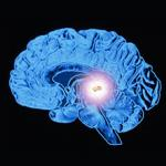 اثر مخرب فلوراید بر غده پینه آل و چشم سوم